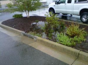 Stormwater Retrofit ()Henrico County, Virginia)