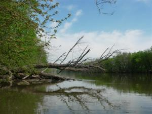 Potomac River near Balls Bluff, Loudoun County