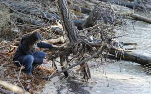 Delmarva Shoreline Erosion